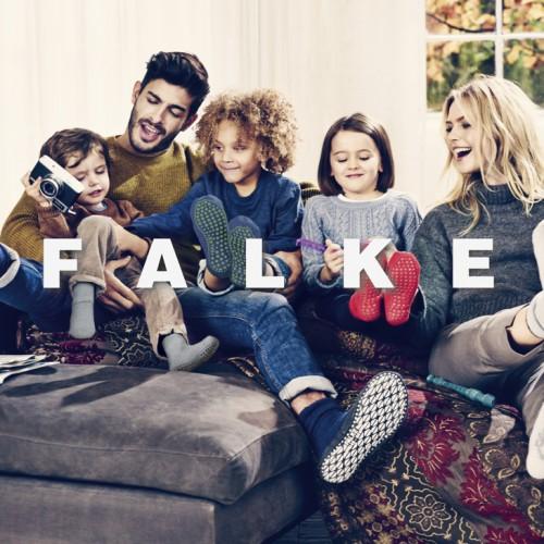 Falke-7